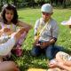 Sommerskoledeltakere som bygger tårn med spaghetti ute i gresset
